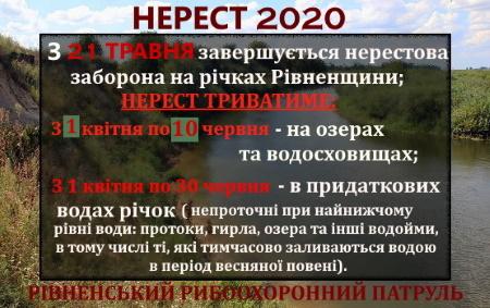 З 21 травня завершується нерестова заборона на річках Рівненщини