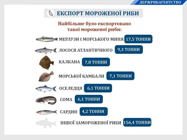 За підсумками шести місяців 2019 року на зовнішні ринки поставлено 217 тонн української мороженої риби. Експорт продукції становить $573 тис.